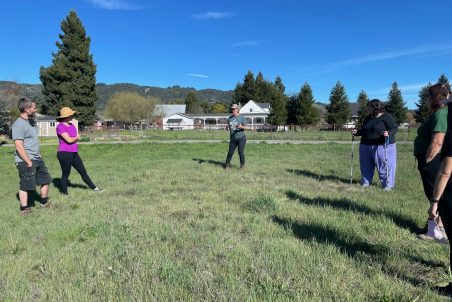 5 people meet outside in a green field in a big circle to discuss grazing.