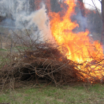 Pile Burning Regulations and Guidance in the Rainy Season