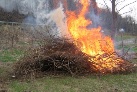 Burn pile on fire